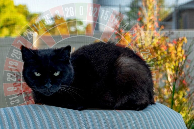 Roulette: The Weird and Wonderful World of Superstition